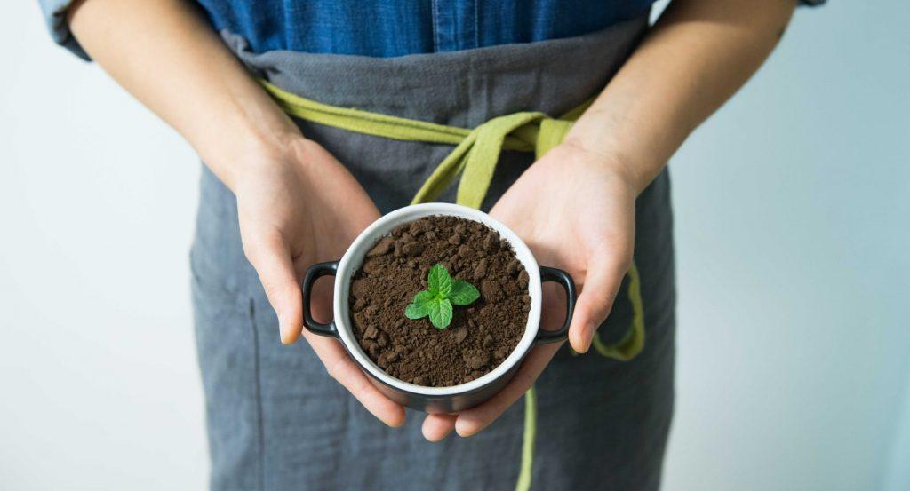 O que o solo e seu aparelho digestivo tem em comum?