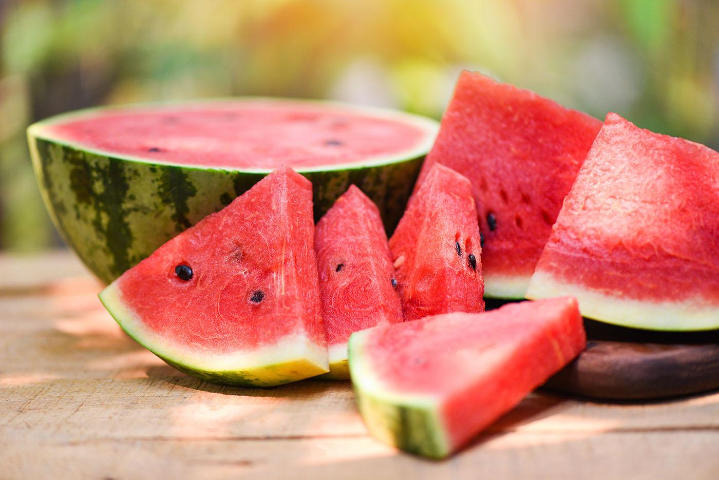 Nutrição e fertirrigação da melancia