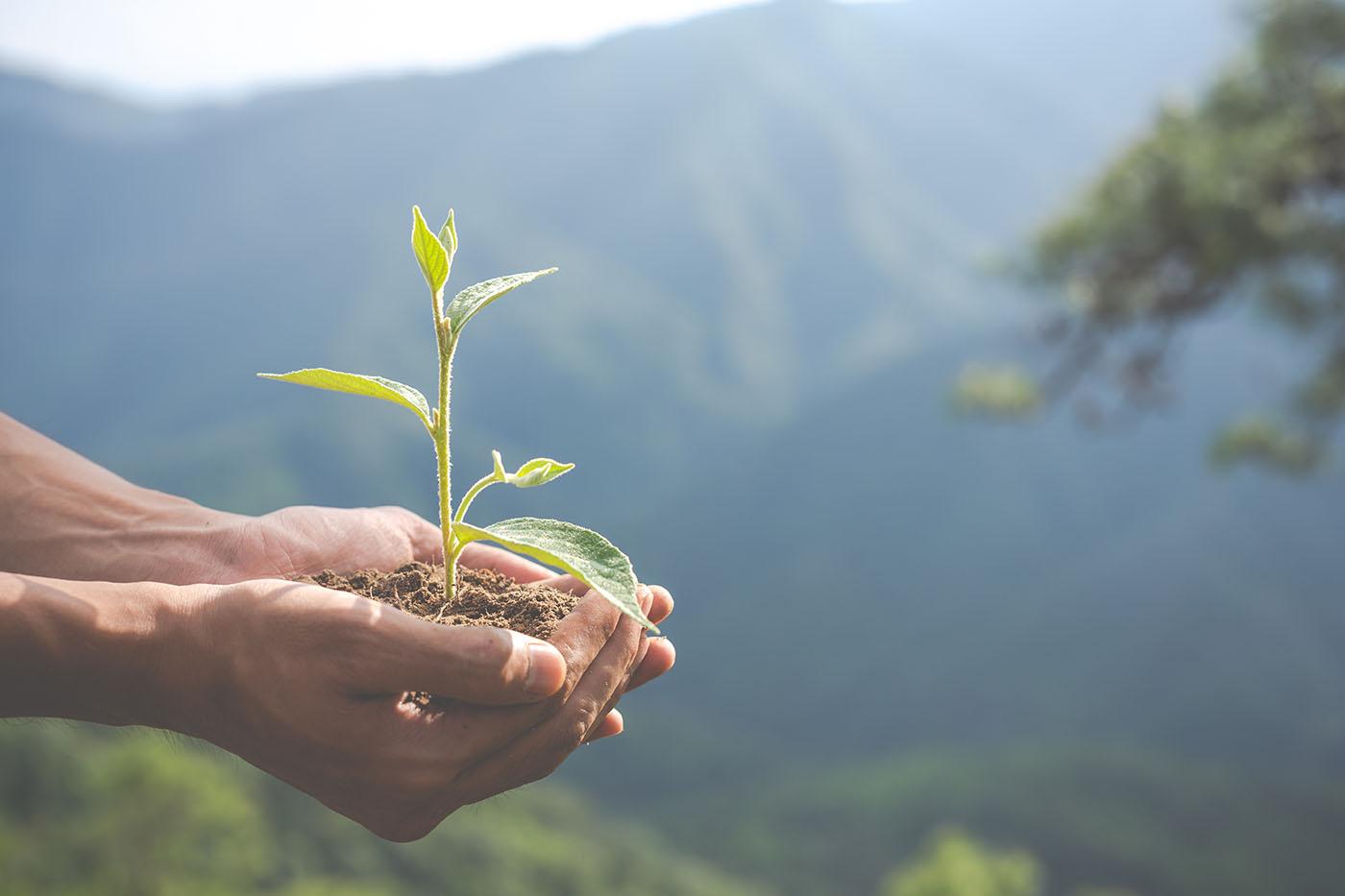 Agroecologia: Conceitos
