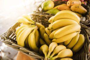 Panorama da Fruticultura Brasileira: Banana